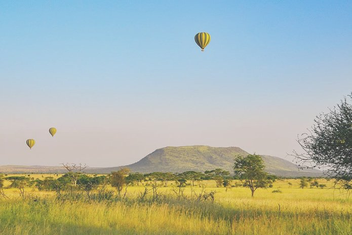Tour Packages-Africa safari tour-Serengeti African Safari africa safaris namibia south africa safaris wildlife africa safaris