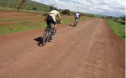 Maasai Steppe Cycling Expedition and Wildlife Safar