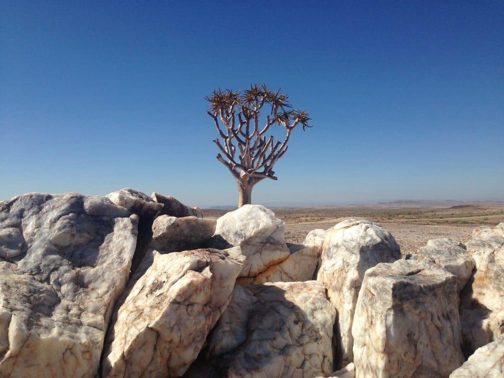 Namibia-CapetoKili-El Mundo Safaris