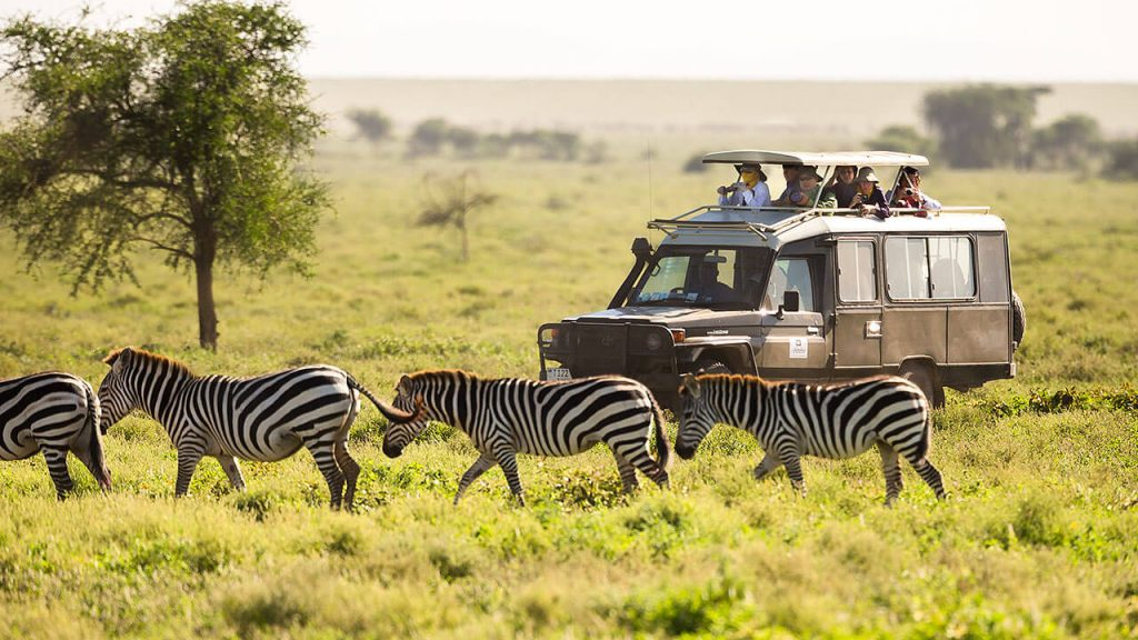 Kilimanjaro and safari packages