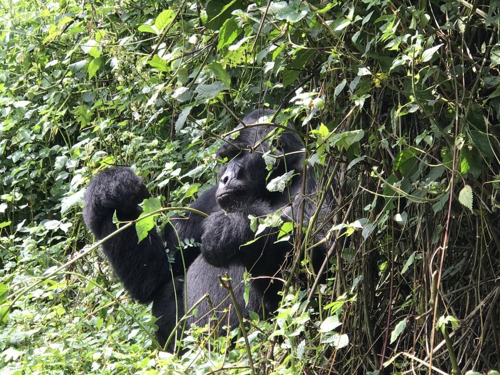 Explore Uganda