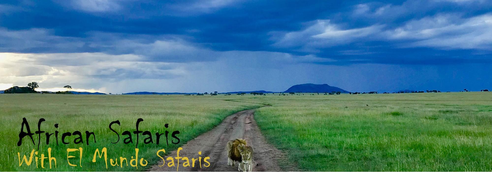 ElmundoSafaris_AfricanSafaris_img
